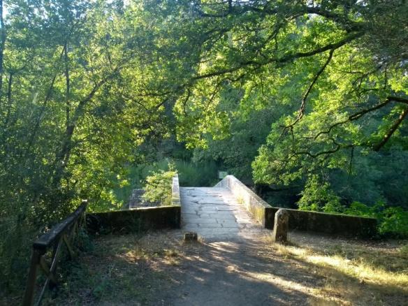 ponte-do-demo-062
