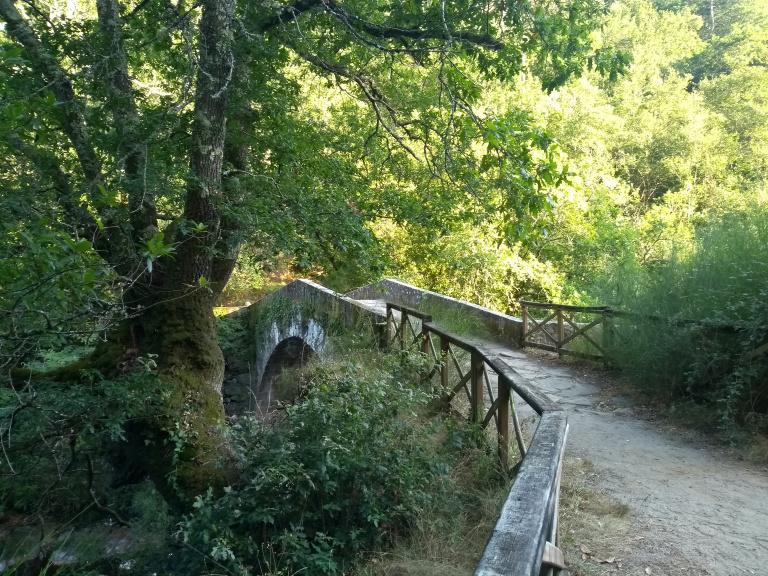 ponte-do-demo-067